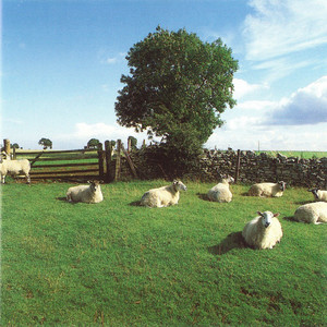 The KLF ‎– Chill Out